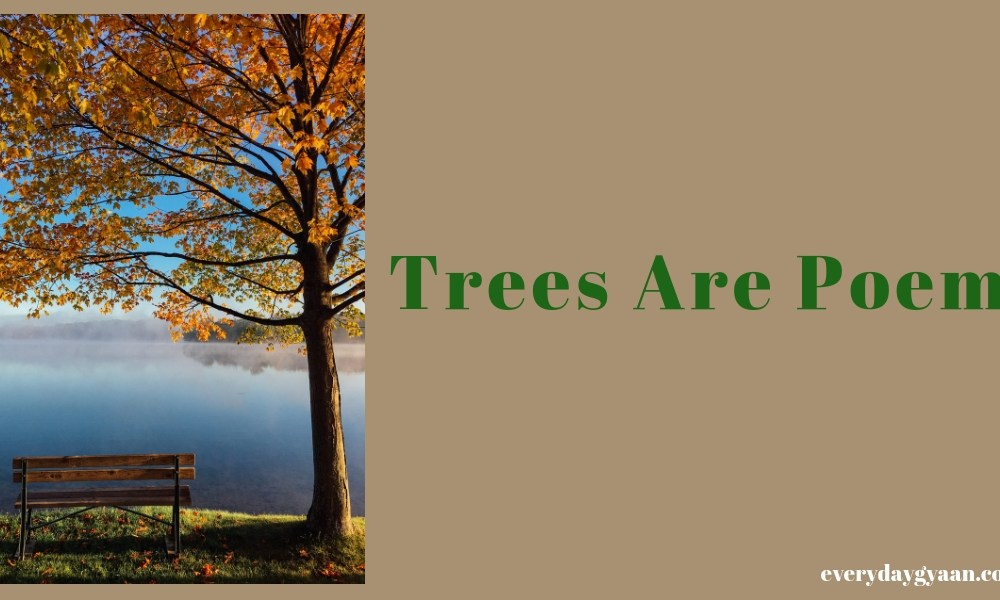 Trees Are Poems #FridayReflections