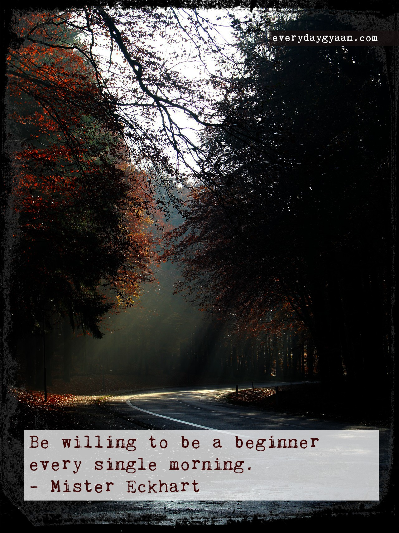 Be A Beginner Every Day #100WordsonSaturday