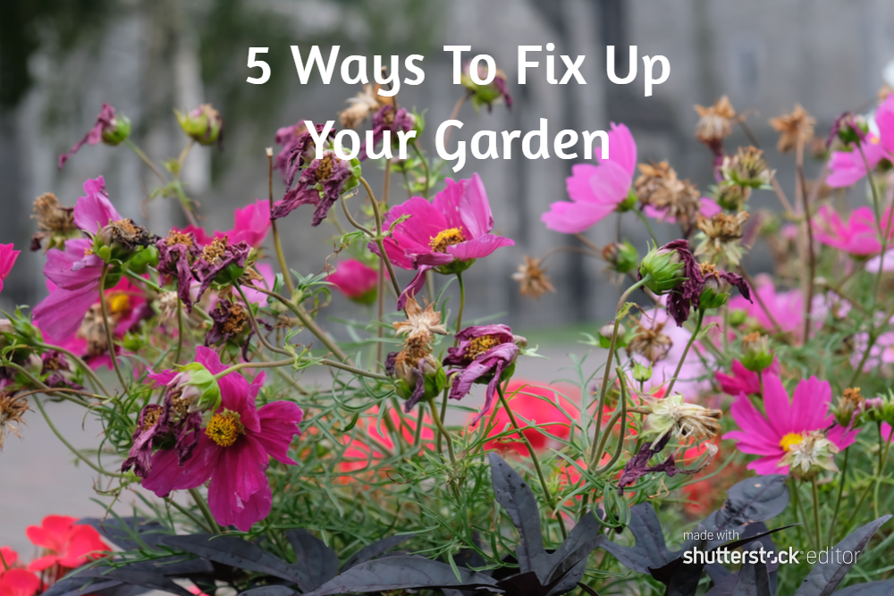 5 Ways To Fix Up Your Garden
