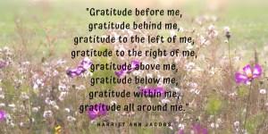 gratitude all around me