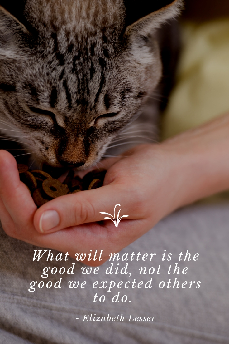 The Good We Did #MondayMusings