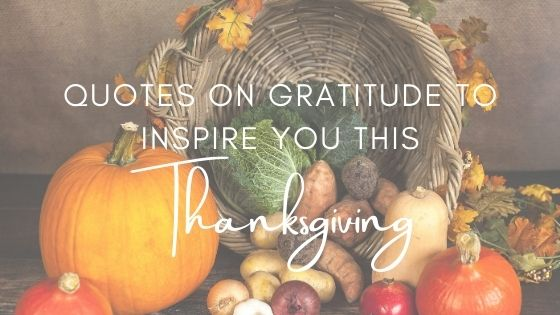 Quotes on Gratitude To Inspire You