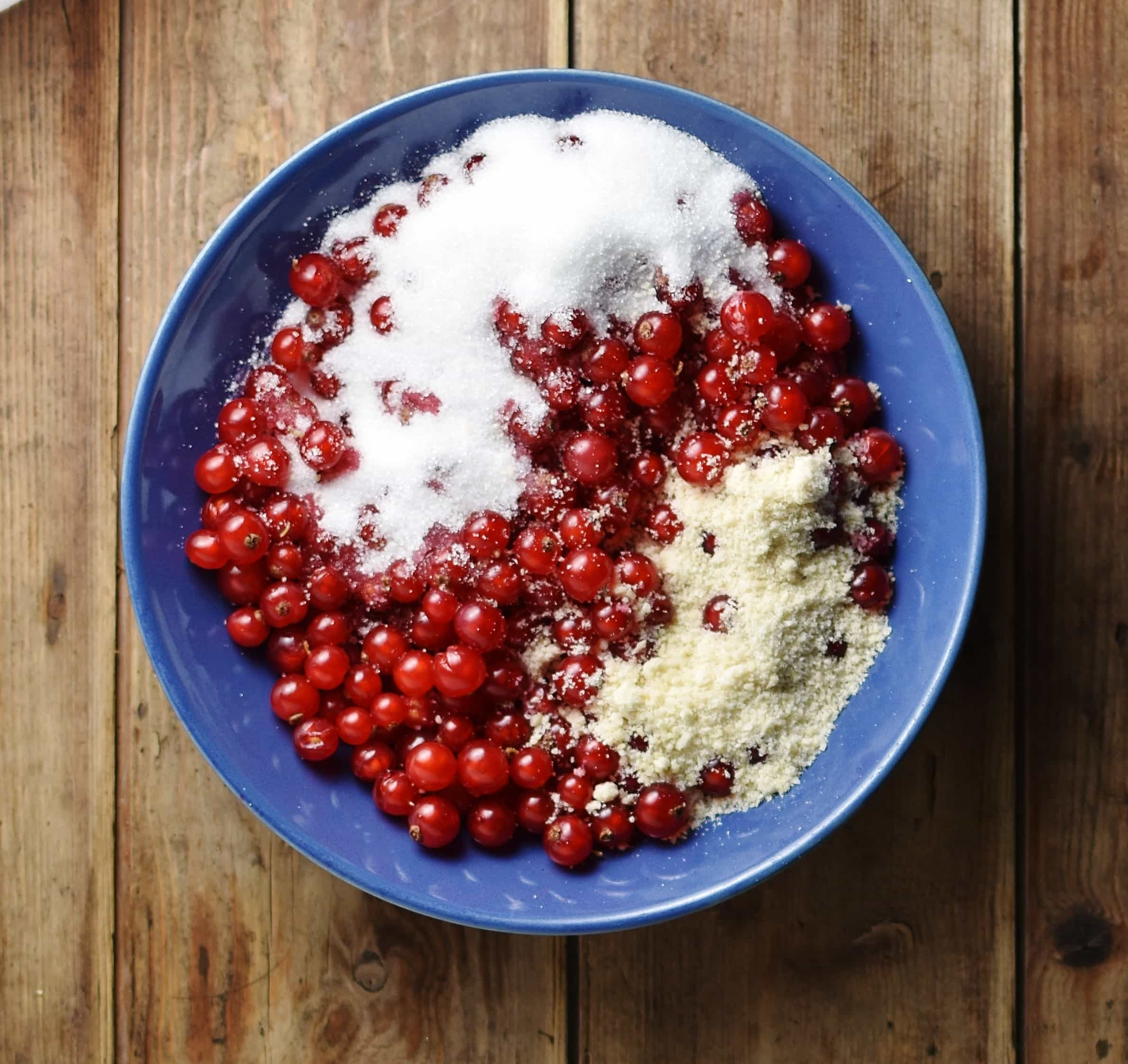 Redcurrants with sugar and ground almonds inside blue bowl.