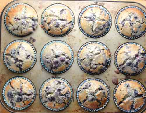 Gluten Free Blueberry Muffins with Maple Syrup