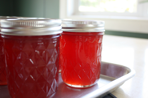 Sandhill Plum Jelly Recipe