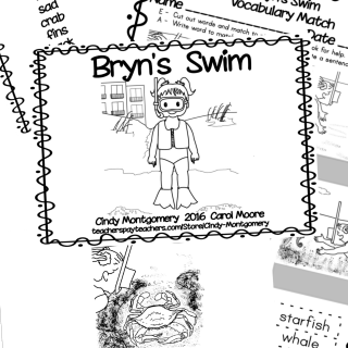Bryn's Swim Emergent Reader @ TpT