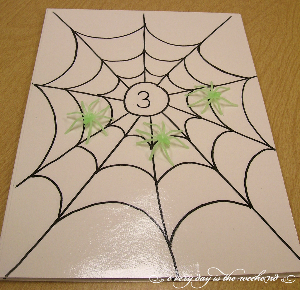 Spider Web Counting