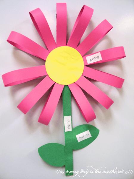 labeling Spring flower