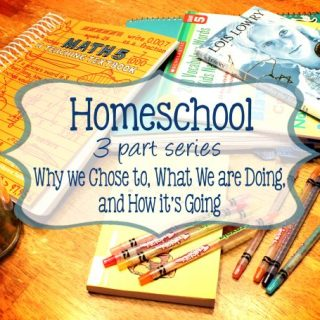 A Change in Focus: Homeschool Part One, Why We Chose To