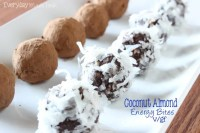 Coconut Almond Energy Bites (V/GF) and New Silk Nutchello