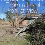 Hurricane Michael From a Local Point of View - You have no idea what it's like, until you've seen it, up close and personal. | EverydayMadeFresh.com