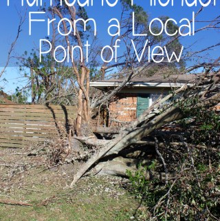 Hurricane Michael From a Local Point of View