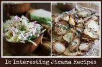 15 Jicama Recipes from www.EverydayMaven.com