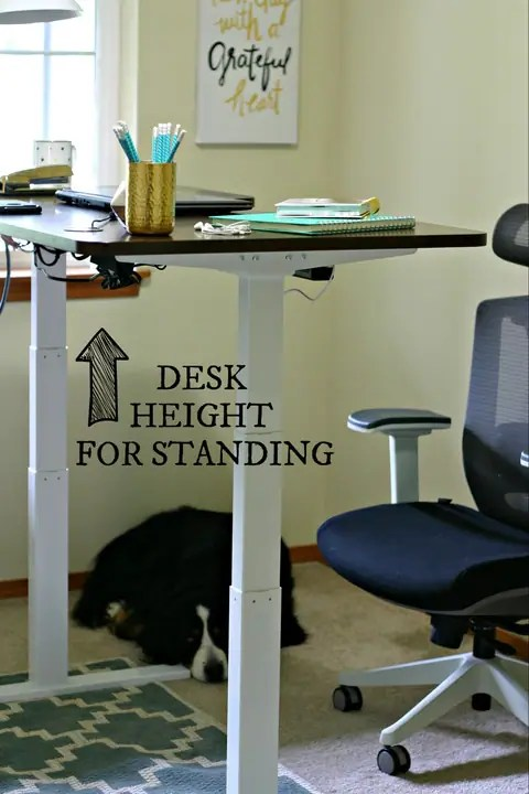 Motorized Sit to Stand Desk with www.EverydayMaven.com