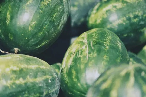 close up of large green watermelons