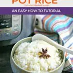 bowl of cooked rice in front of an instant pot