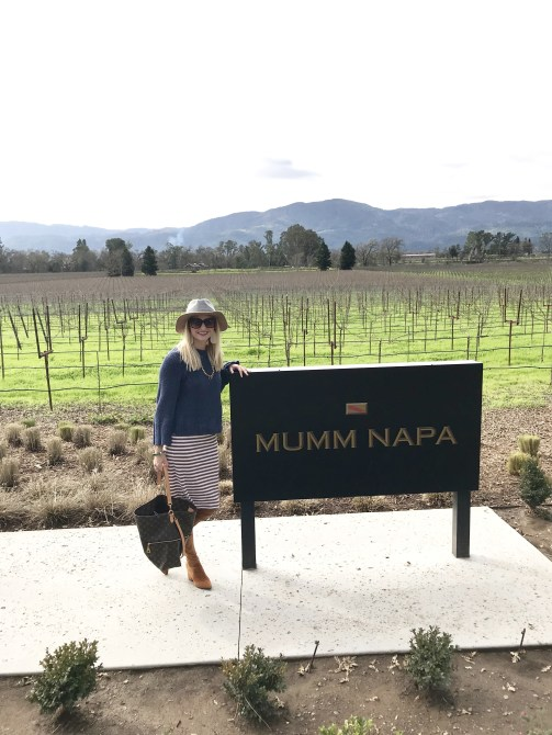 napa for wine lovers