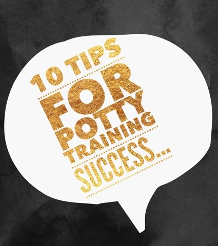 9 Tips for Potty Training Success