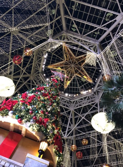 Things To Do This Holiday Season In Dallas Texas