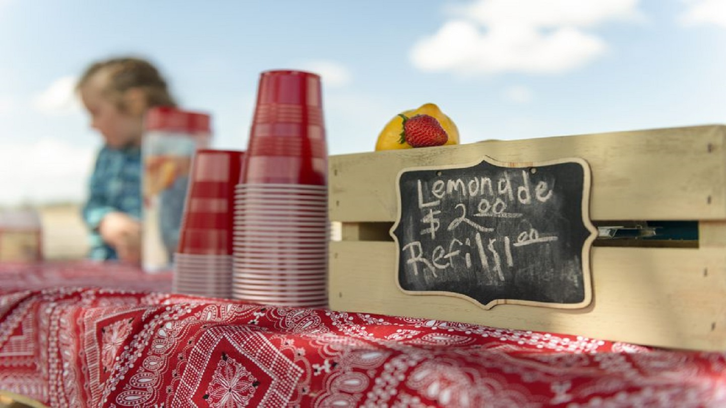 Lemonade Stand IS_1560265667056.jpg.jpg