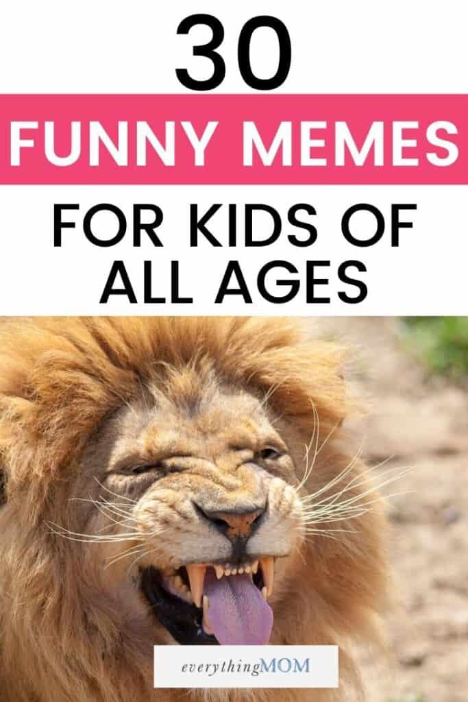 7 Funny Memes April Fools Edition Speedclean