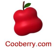 CooberryLogo