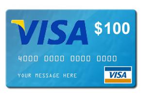 Visa100