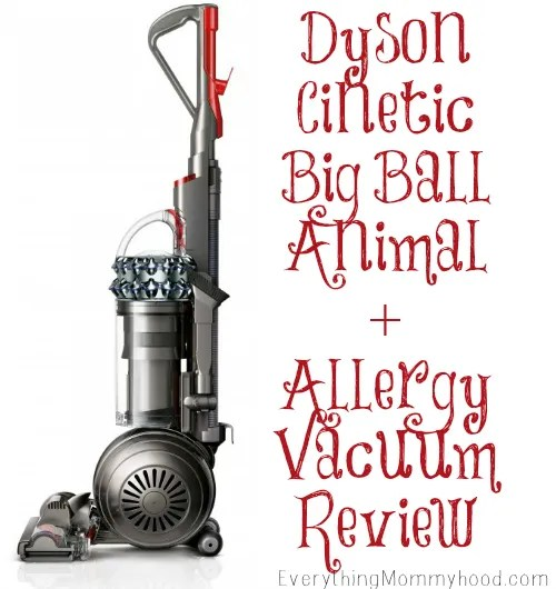 Dyson Cinetic Big Ball Allergy Animal