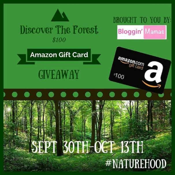DiscoverTheForest