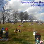Must See – The Brookhaven Cherry Blossom Festival #CherryFest17