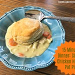 15 Minute Recipe: Simple Creamy Chicken Noodle Pot Pie