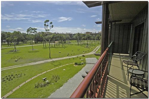 Disney Animal Kingdom Lodge Resort Hotel