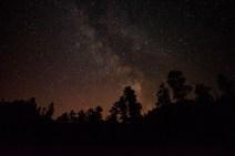 Spearfish Canyon Star Studded Night