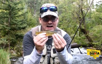 "I love to ""break free"" for some fly fishing in Spearfish Creek"