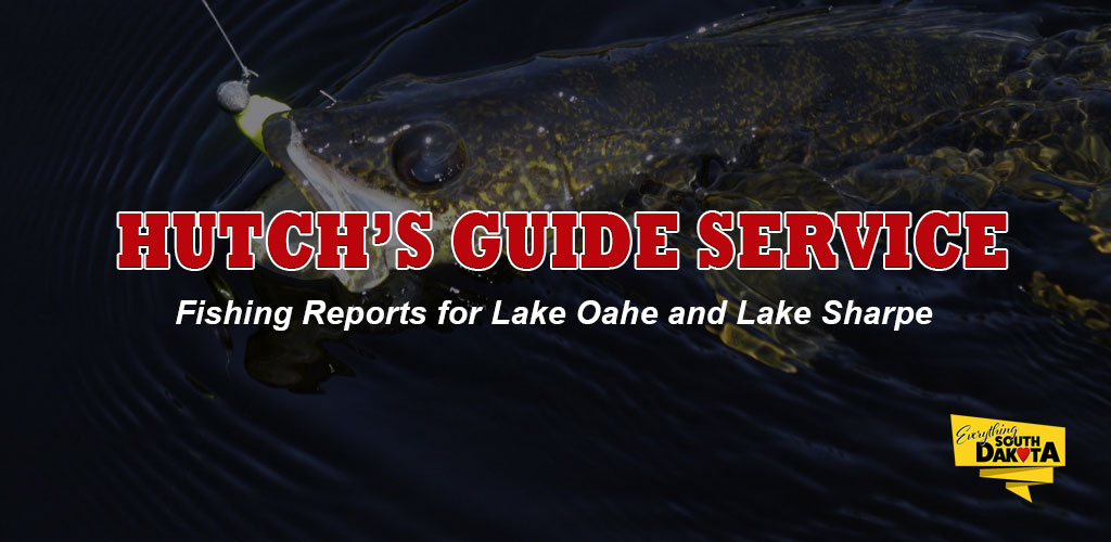 FISHING REPORT LAKES OAHE/SHARPE PIERRE AREA FOR AUGUST 2ND THRU AUGUST 11TH 2018