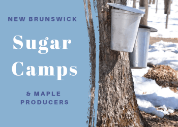 Maple Sugar Camps and Maple Producers in New Brunswick