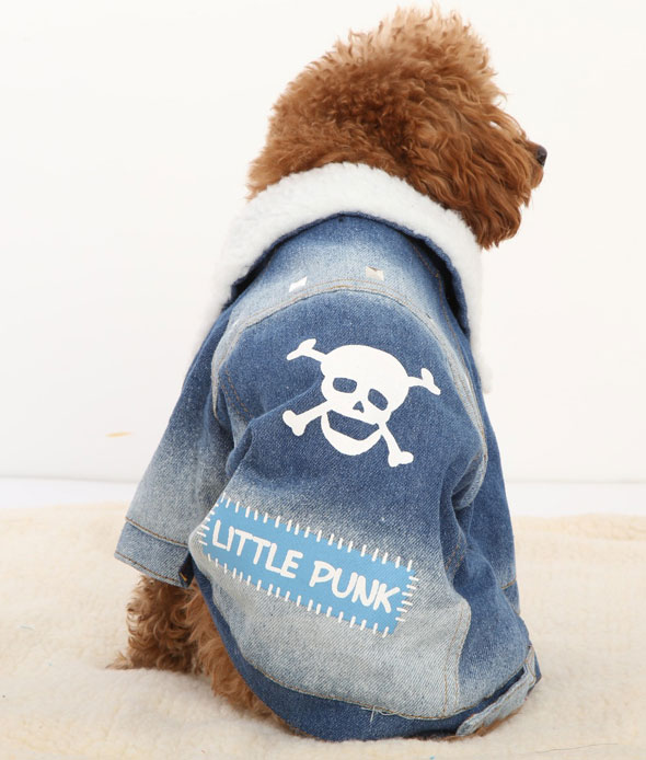 dog-and-jeans-10