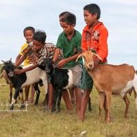 Foto Kambing Hitam dan Anak-Anak