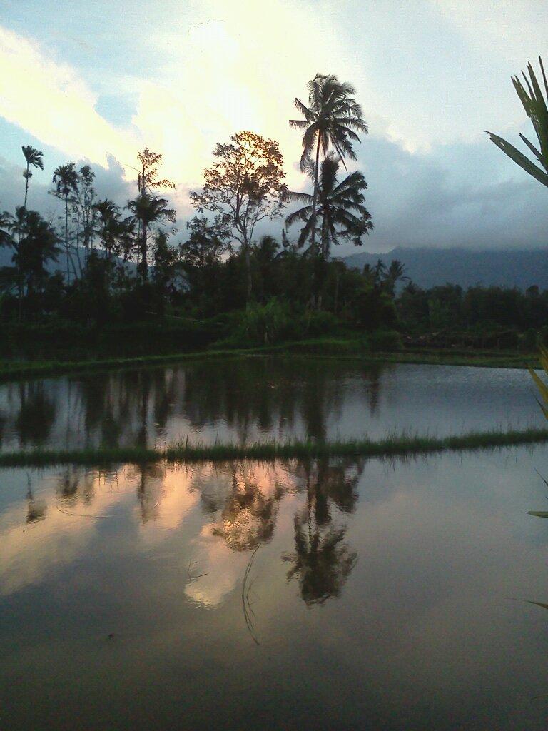 Foto Senja di Suatu Petang di Kampung