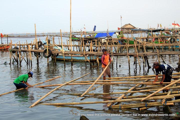 Mengamati aktivitas nelayan