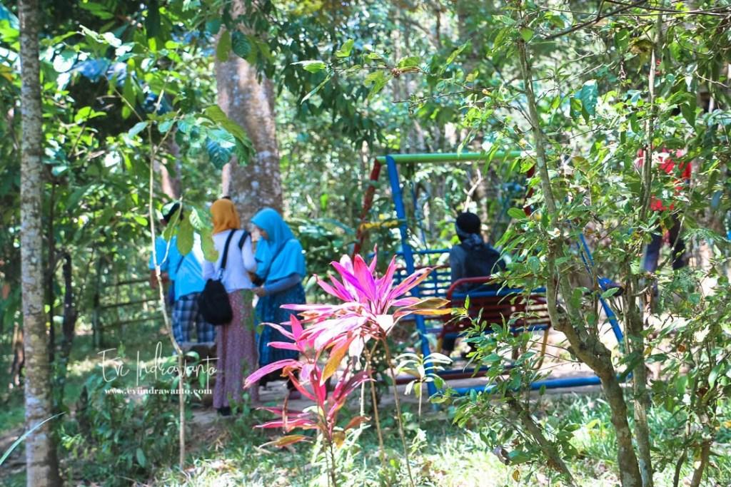 Foto Gambar Taman Kupu Kupu Gita Persada
