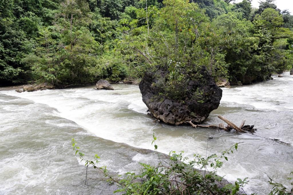 Kayu hanyut dekat Air Terjun Lapopu Sumba