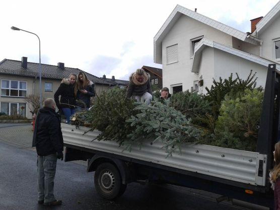 Weihnachtsbaumaktion-2014-1