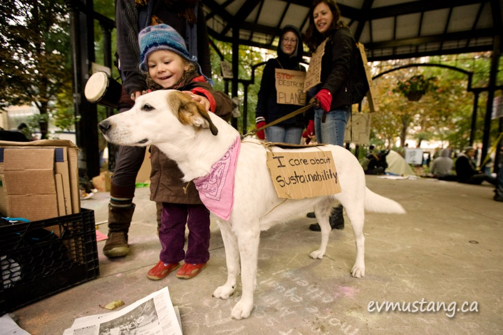 """image of toddler petting a dog with """"i support sustainability"""" sign at occupy toronto"""