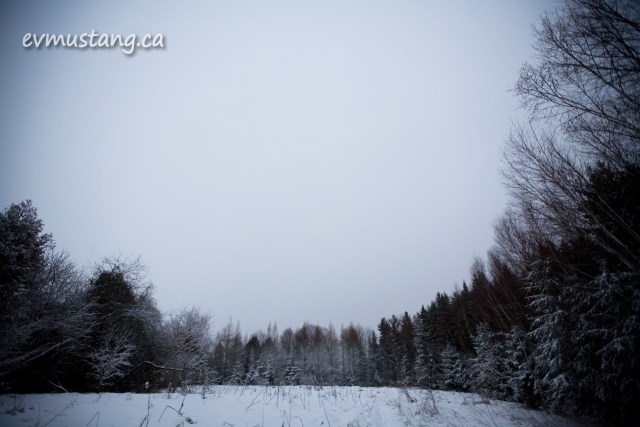 image of snow covered trail through forest