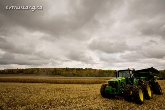image of tractor moving through cornfield