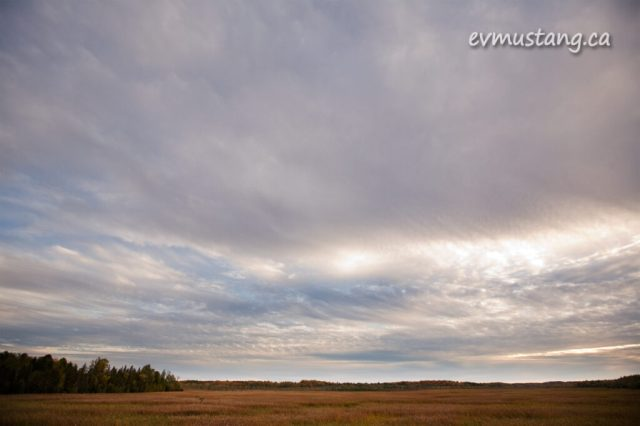 image of clouds over autumn marsh colours