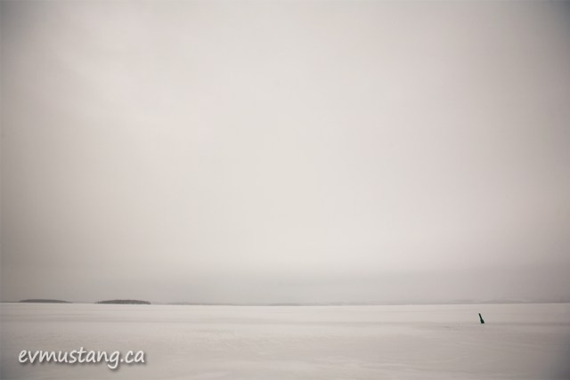 a buoy frozen in rice lake