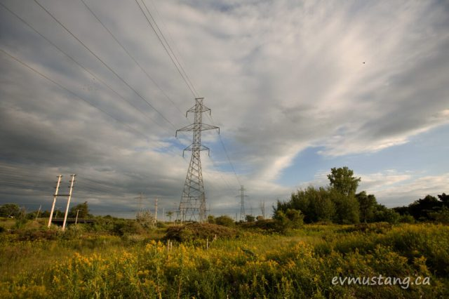 image of hydro wires as the sun turns the autumn grasses golden