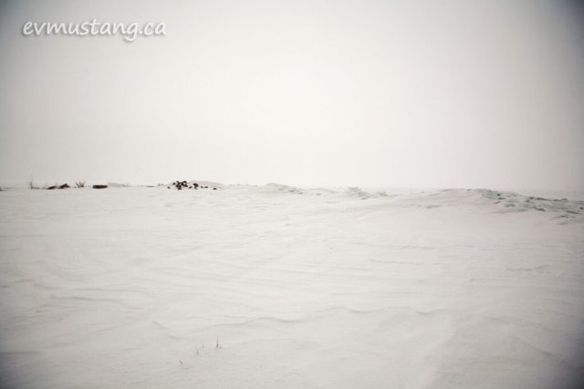 image of frozen lake shore in whiteout snow